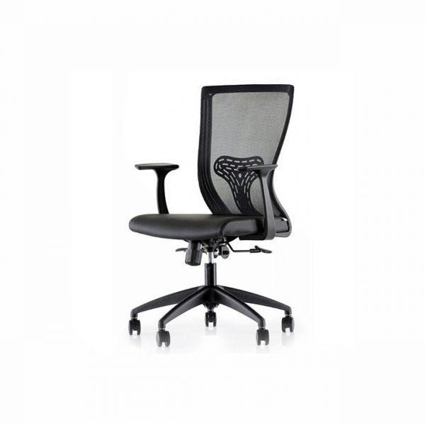 Ofis Sandalyesi Ergonomik Bel Destekli Ringo