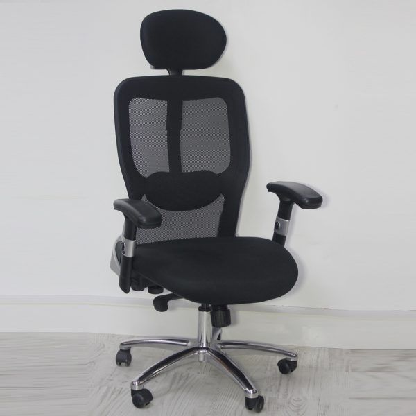 Makam Koltuğu, Yönetici Sandalyesi Omega