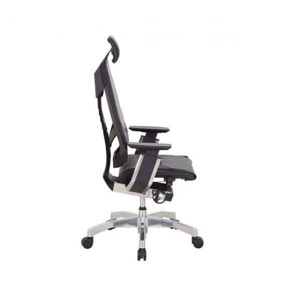 Yönetici Sandalyesi Genidiya